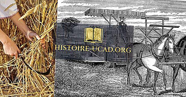 Czy brytyjska rewolucja rolna doprowadziła do rewolucji przemysłowej?