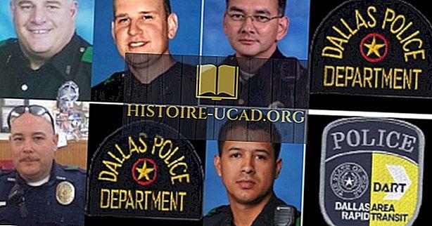 US-Bundesstaaten mit den meisten getöteten Polizeibeamten im Dienst