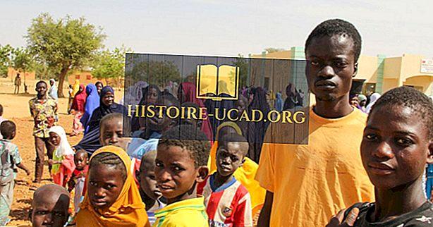 Cele mai mari grupuri etnice din Niger
