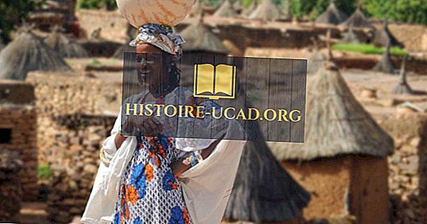 Grootste etnische groepen in Mali