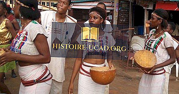 Grupy etniczne Gwinei (Konakry)