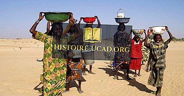 Les plus grands groupes ethniques du Tchad
