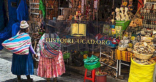 बोलीविया के जातीय समूह