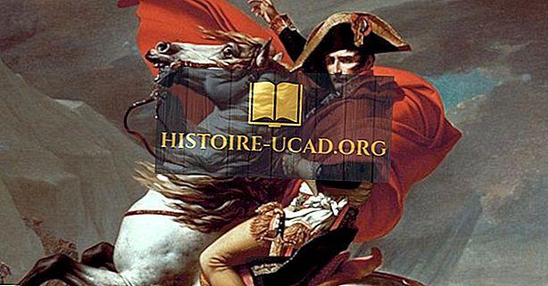 друштва - Наполеон Бонапарте - светски лидери у историји