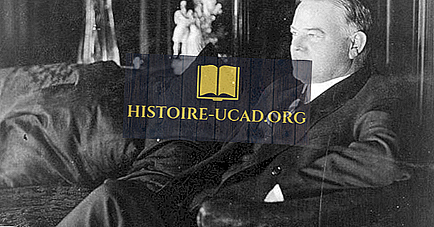 Herbert Hoover - ameriški predsedniki v zgodovini