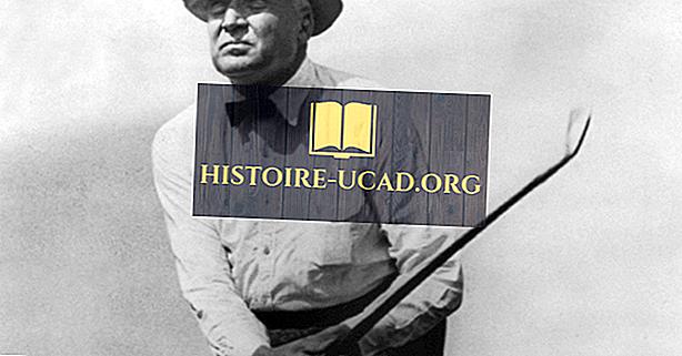 Warren G. Harding - Présidents américains dans l'histoire