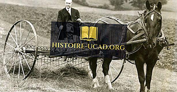 Calvin Coolidge - US-Präsidenten in der Geschichte
