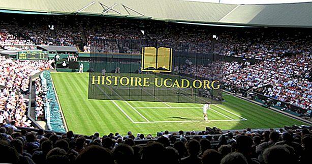 Die Top-Wimbledon-Gewinnerländer