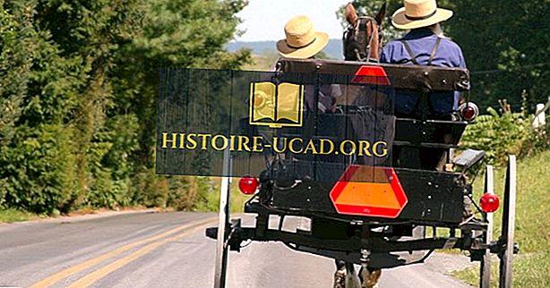 Amish - kultuurid üle maailma