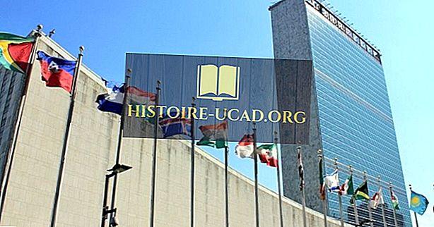 Združeni narodi - mednarodne organizacije v zgodovini