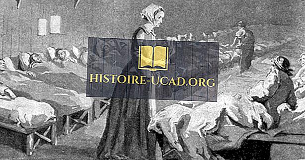 Florence Nightingale - Figuras importantes en la historia