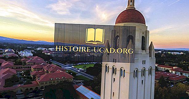 Станфордски университет - образователни институции по света