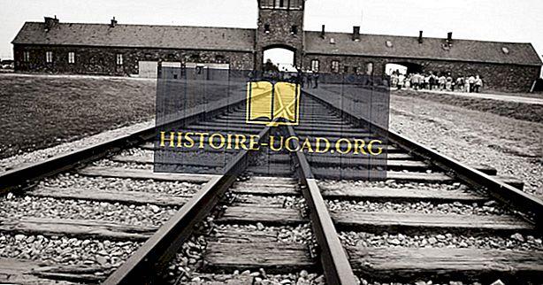 Die Schrecken des Konzentrationslagers Auschwitz