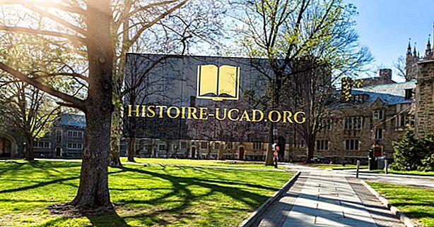 Princeton univerzita - vzdělávací instituce kolem světa
