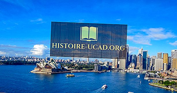 Naujosios Pietų Velso universitetas (UNSW) - Pasaulio švietimo įstaigos