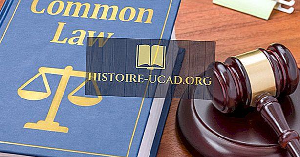 Kas ir kopējās tiesības?