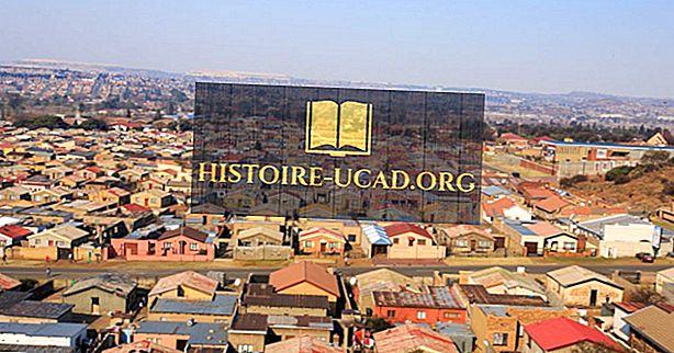 Kaj se je zgodilo med študentsko upornostjo v Južni Afriki?