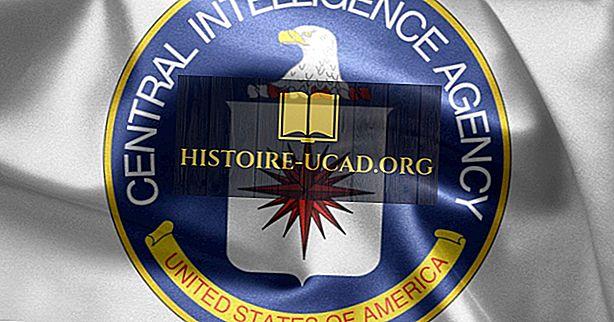 Qu'est-ce que la CIA?