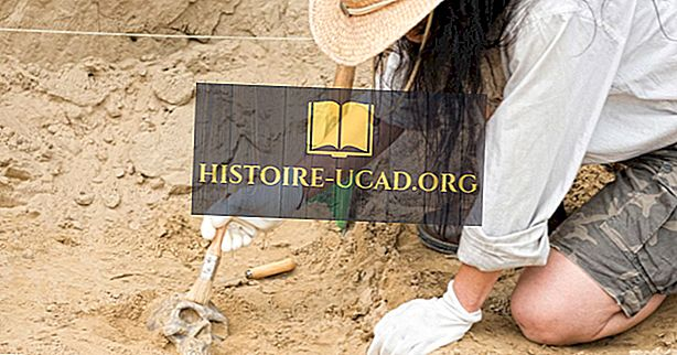 एक पुरातत्वविद् क्या करता है?