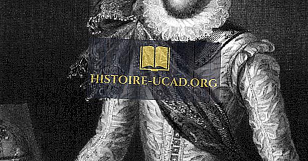 toplum - Sir Walter Raleigh - Dünyanın Ünlü Kaşifleri