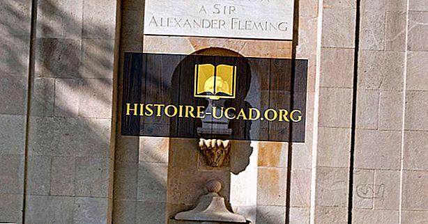 Alexander Fleming - figuras importantes ao longo da história