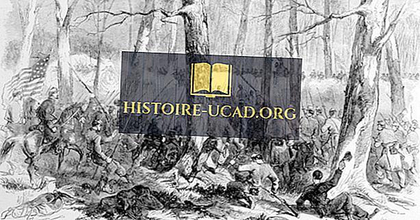 toplum - Fort Donelson Savaşı: Amerikan İç Savaşı