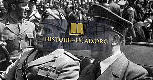 Kdo je bil Adolf Hitler?