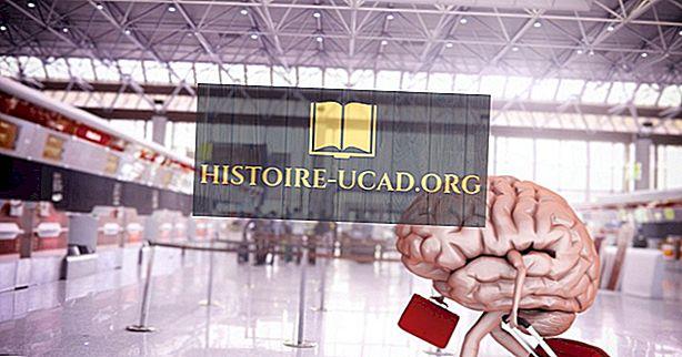 สมองไหลคืออะไร