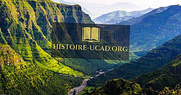 Katere jezike govorijo v Etiopiji?