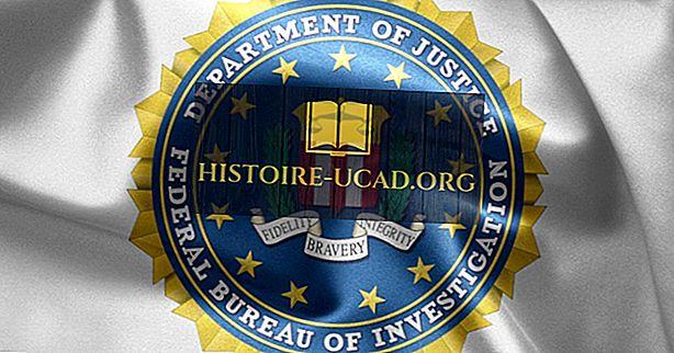 Federal Soruşturma Bürosu - Dünyadaki Örgütler