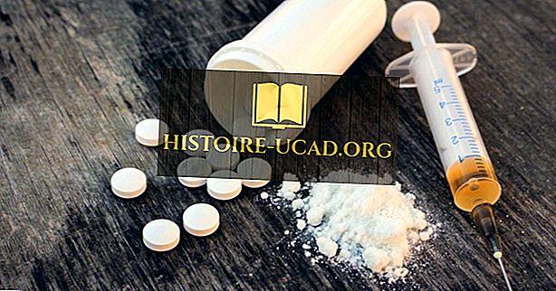 États avec le taux le plus élevé de surdose de drogue