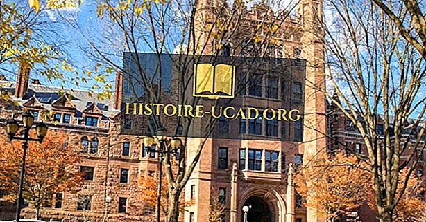 Yale University - izglītības iestādes visā pasaulē