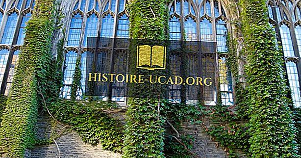 Kas ir Ivy League skolas?