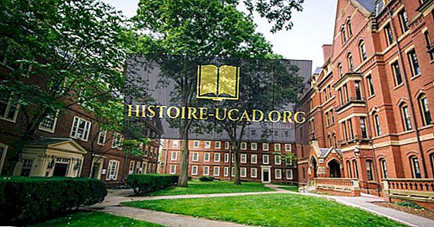 الجامعات حسب عدد علماء رودس