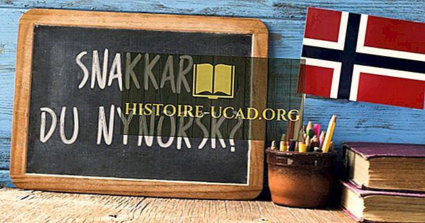 ノルウェーではどの言語が話されていますか?