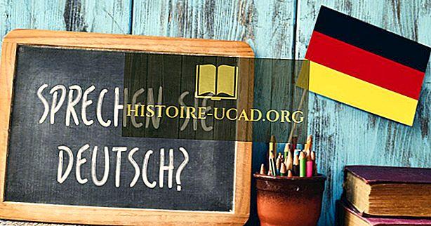 Quelles langues sont parlées en Allemagne?