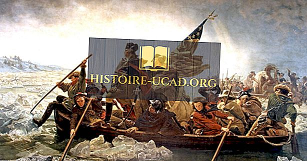 Bitva o Trenton: Americká revoluční válka