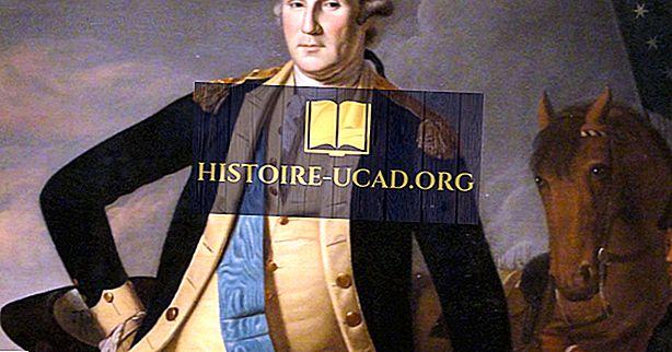 toplum - Princeton Savaşı: Amerikan Devrim Savaşı