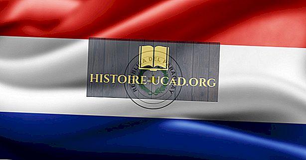 Bahasa apa yang Diucapkan di Paraguay?