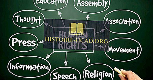 Dezvoltarea dreptului internațional al drepturilor omului