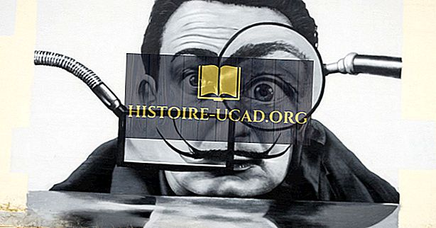 Wer war Salvador Dali?