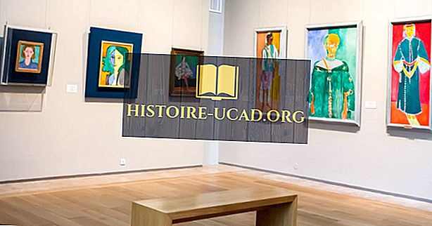 Beroemde kunstenaars: Henri Matisse