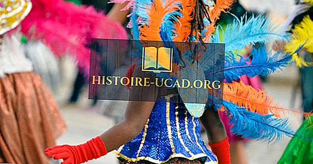 Het carnaval van Rio de Janeiro