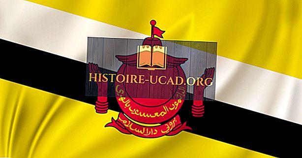 ¿Qué idiomas se hablan en Brunei?