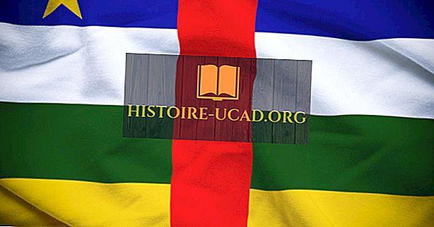 Orta Afrika Cumhuriyeti'nde hangi dilleri konuşulur?