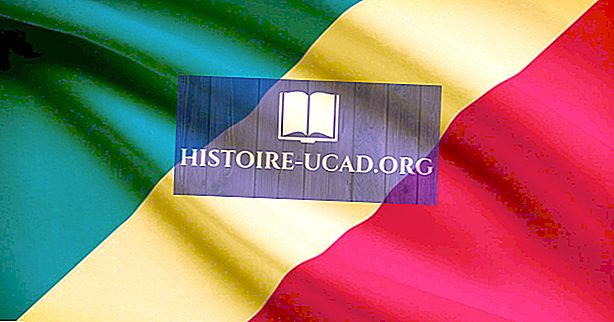Hvilke sprog tales i Republikken Congo?