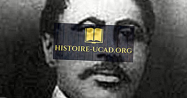 Macon Bolling Allen - olulised näitajad USA ajaloos