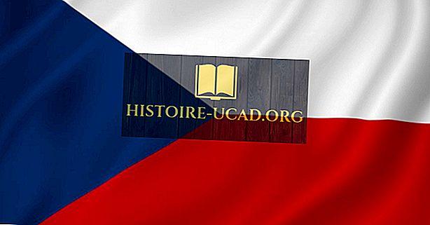 Какви езици говорят Чешката република?