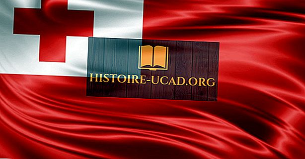 Jaké jazyky jsou mluveny v Tonga?