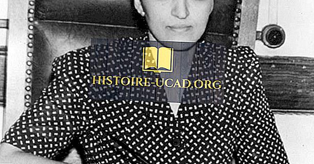 Jane Bolin - svarīgi dati ASV vēsturē